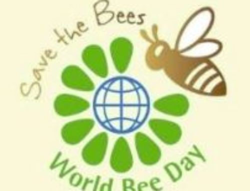 World Of Bees & Honey Event Taking Place In London on May 21, 2019